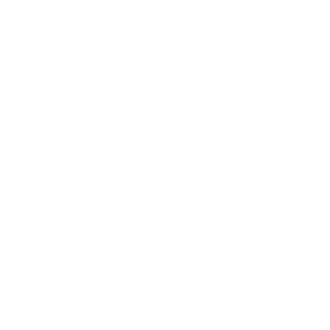 DEEP RHYMES logo white def2